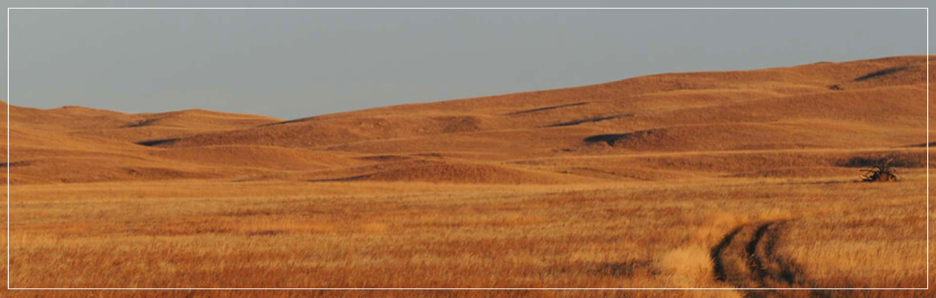 The Nebraska Sandhills